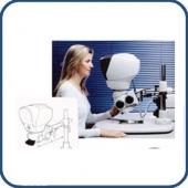 Stéréo microscope LINX